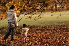 Oltre le foglie d'autunno