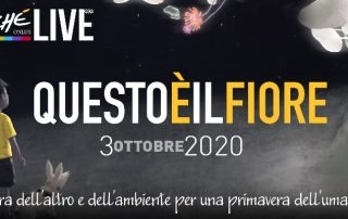 grafica save the date